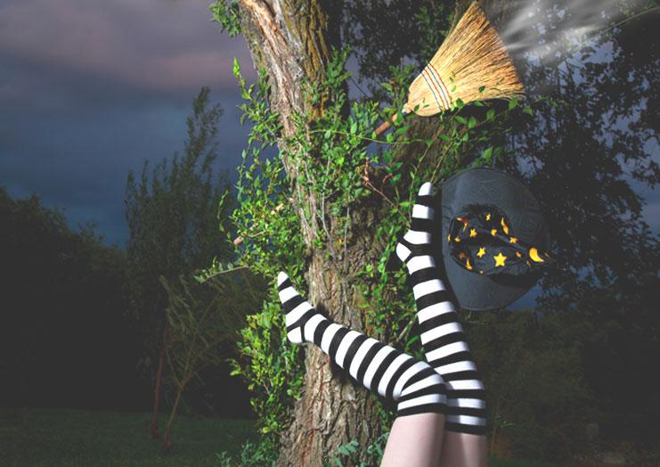 Last Call for Halloween Socks